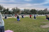 Китайская гимнастика Тай-Чи (Tai Chi) в парке Центра культуры Фонда Ставроса Ниархоса в Афинах